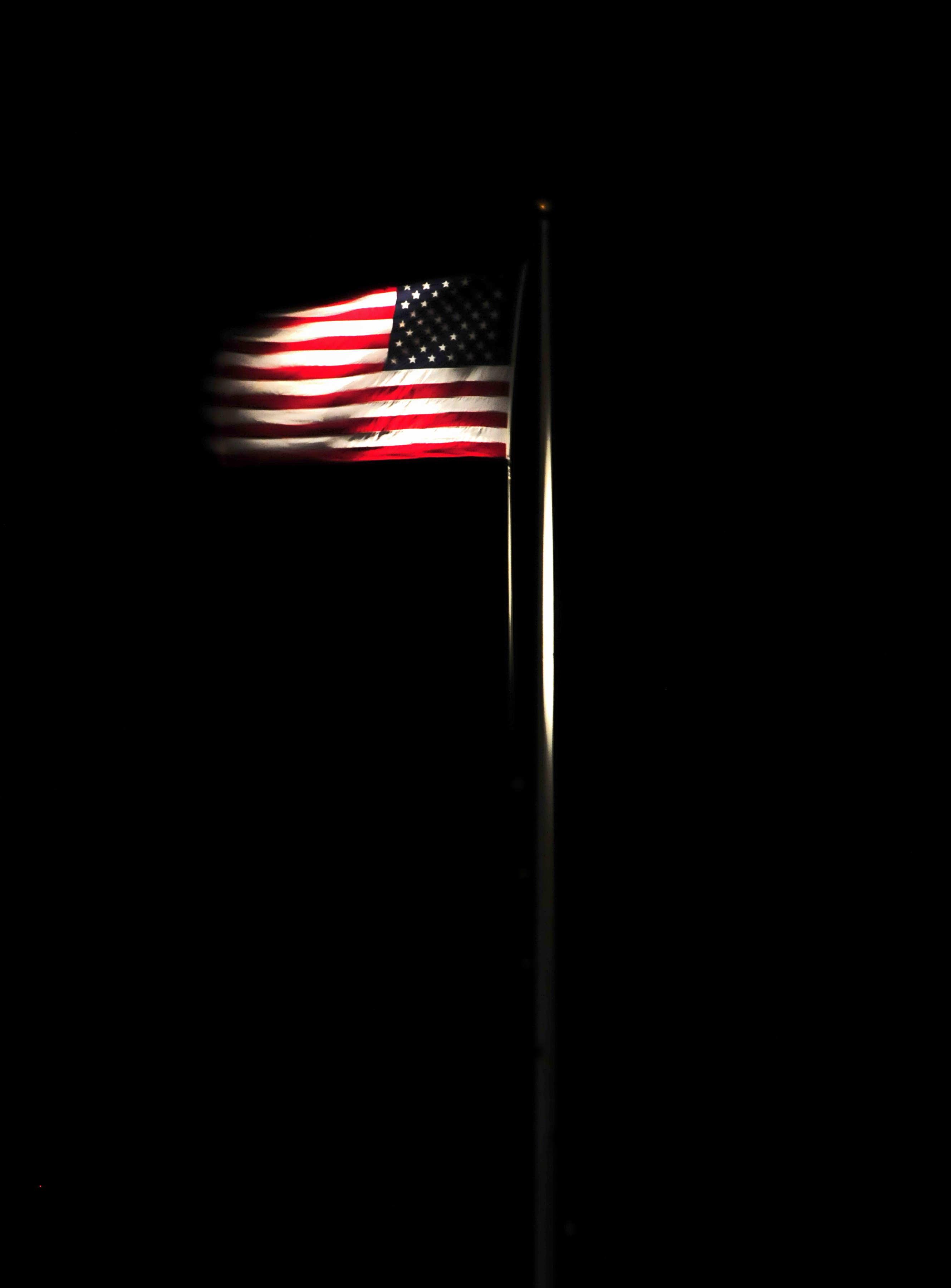Top Yard Lights For Your 4th Of July Bbq Elights Blog